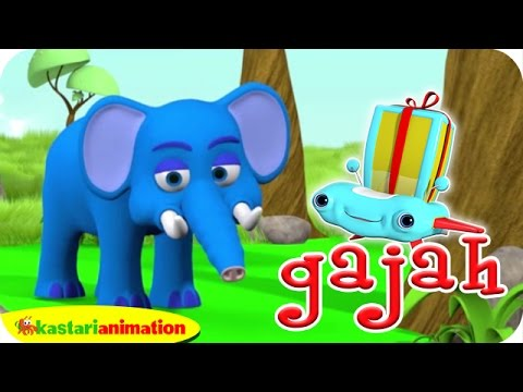 Gajah Kecil Kita | Lalala Indonesia | Kastari Animation Official