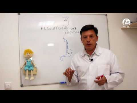 Сроки лечения жирового гепатоза печени