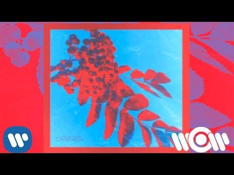 Денис RiDer - Снегири | Official Audio