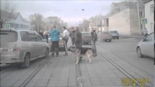 Драки на дорогах.Мужик заступился.Разборки Уличные драки