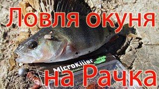 Рачки для ловли рыбы