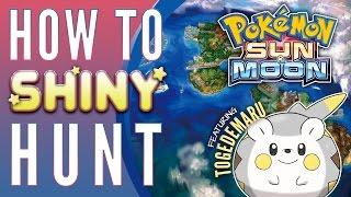 Togedemaru  - (Pokémon) - How To Shiny Hunt in Pokemon Sun and Moon - Shiny Togedemaru