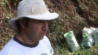 preview picture of video 'A day with Eduin Naranjo at El Vapor de Tarrazu coffee estates'