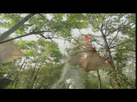 Hero Fong Sai Yuk - Episode 1 (1/4)
