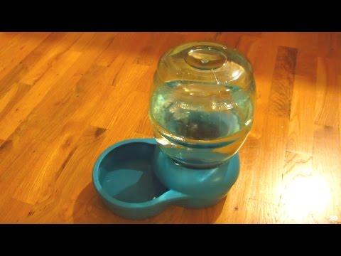 Petco Petmate Water Dispenser Part 4 - Water Demo