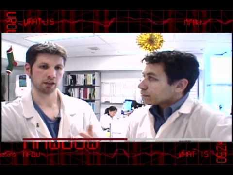 What Is Urology - Scope Of Urology
