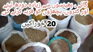 20 types of cattle feed|| Cow farming in Pakistan ||Buffalo farming in Pakistan ||Dairy farming
