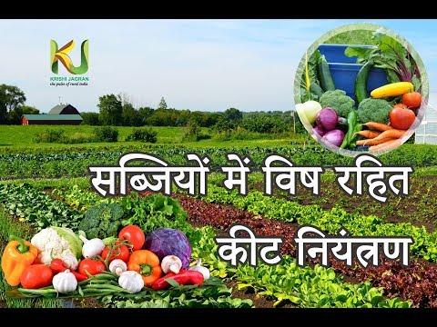 सब्जियों में कीट विष रहित कीट नियंत्रण