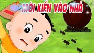 BỐ ĐẦU NHỎ CON ĐẦU TO: Đàn Kiến Chuyển Nhà - Phim hoạt hình biên soạn cho trẻ em 2019