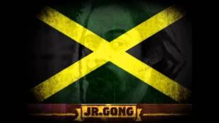 08 - Dispear - Damian 'Jr. Gong' Marley - Live in Sao Paulo 12.11.11