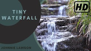1 Hour Nature Sounds Relaxing Meditation-Birdsong Relaxation by Johnnie Lawson-Calming Study Aid