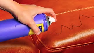 22 PRICELESS STAIN REMOVAL TIPS