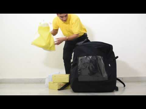 Insular Grocery and Logistics Delivery Bag