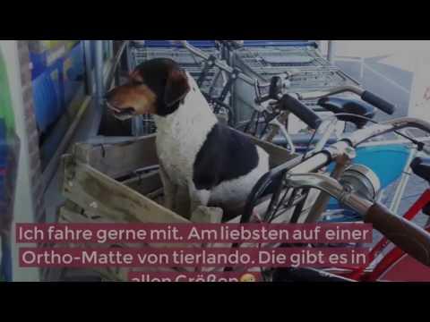 tierlando – orthopädische Visco Hundematte ALICE