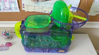 Fluffy In A Kaytee Critter Trail Cage
