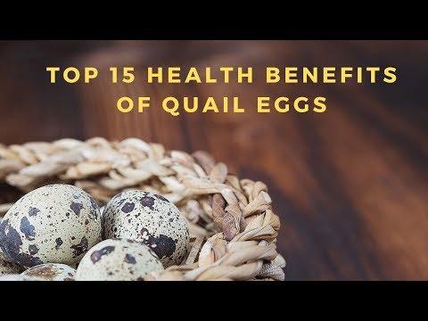 , title : 'Top 15 Health Benefits of Quail Eggs I Diabetes Health Free
