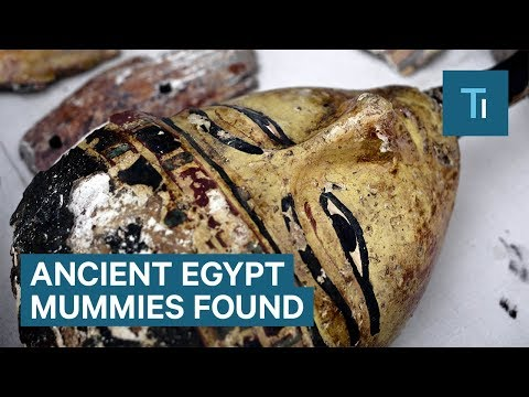 Newly unearthed 15th century BC Egyptian tomb full of mummies and relics