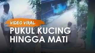 Viral Pemukul Kucing di Bekasi Ditangkap Polisi hingga Alasan Memukul karena Sering BAB di Pot