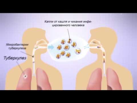 Механизмы и пути передачи гепатитов