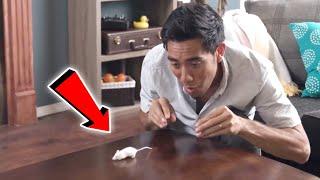 Top Magic Tricks Collection 2018 | Incredible Zach King Magic Tricks!! | Best Magic Trick Ever