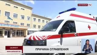 Кумыс стал причиной отравления 11 человек в Шымкентском ресторане