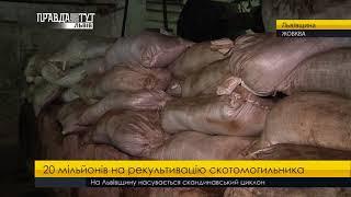 Правда тижня на ПравдаТУТ Львів 19.11.2017