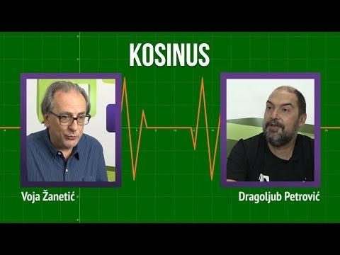 Draža Petrović u Kosinusu: Zamrznuti Kosovo kao Diznija