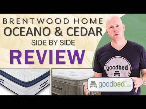 Brentwood Home Cedar and Oceano Mattress Review (VIDEO)