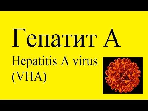 Рекомендация по лечению гепатита с