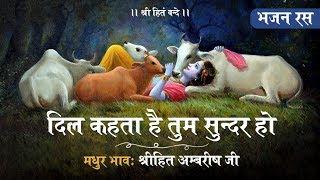 Shree Krishna Bhajan || दिल कहता है तुम सुन्दर हो || Shree Hita Ambrish Ji