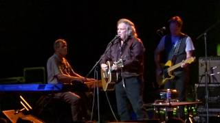 Don McLean - Got the Bull by the Horns