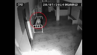 Камера Наблюдения Засняла Смерть Женщины