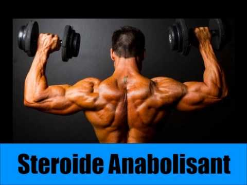 Tous les muscles du corps le tableau de la fonction