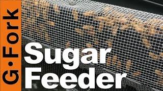 Best Sugar Feeder? - Beginnning Beekeeping - GardenFork