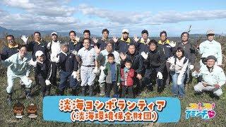 ヨシを守ってびわ湖を綺麗に!「淡海ヨシボランティア(淡海環境保全財団)」