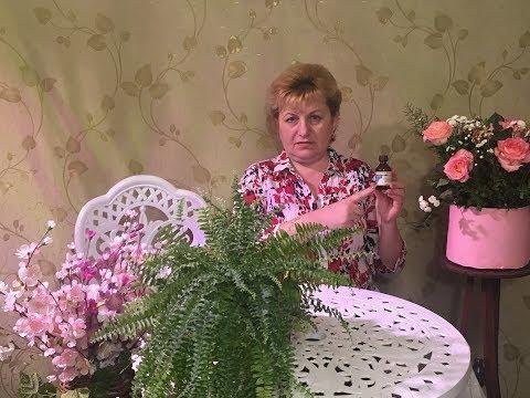 Bubnovskaya esercizi video per larticolazioni dellanca