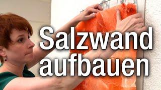 Salzwand mit System aufbauen: Salzwandsystem Komplett