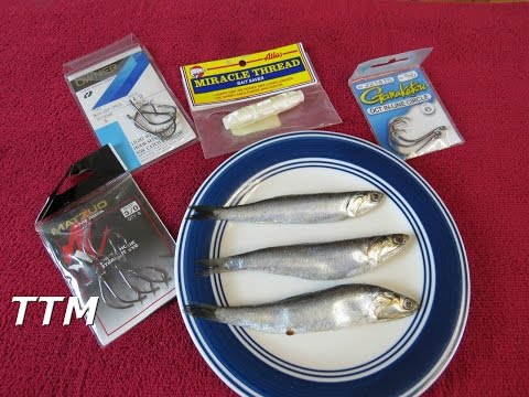 Striper Fishing with Frozen Anchovies for Bait~How to Keep Frozen  Anchovies on the Hook