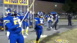 THE TIGER CAGE - Best Football Entrence - must see