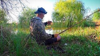 Рыбалка на веточку, как в детстве)) Бешеный клёв воблы, как и всегда.