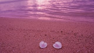 Top Ten Wonderful Pink Beaches In The World