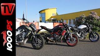 Einsteiger Nakedbikes 2016 Suzuki SV650 Yamaha MT 07 Honda CB650F