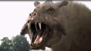 Доисторический мир  Древние животные  Энтелодонт  Документальный фильм National Geographic