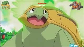 Grotle  - (Pokémon) - Rhyperior vs Grotle   Pokemon Adventure Battle