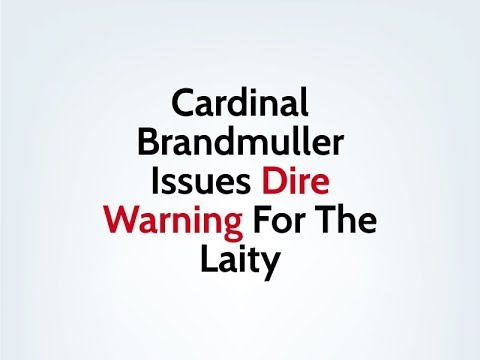 Cardinal Brandmuller Issues A Dire Warning For The Laity