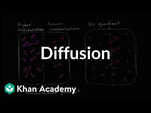 Diffusion - Introduction (video) Khan Academy