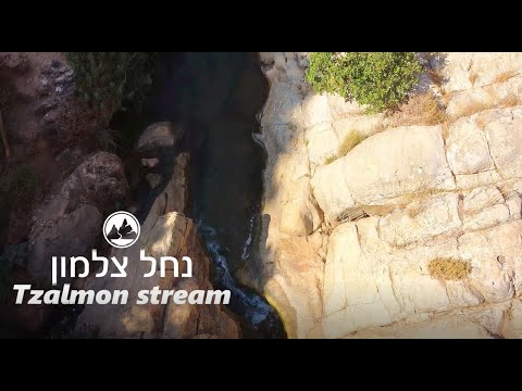 סרטון טבע ונוף נהדר שייקח אתכם לטיול בנחל צלמון