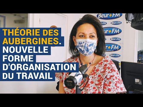 [Book Club] La Théorie des aubergines, nouvelle forme d'organisation du travail - Leïla Bahsaïn