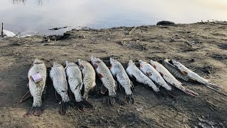 Все о рыбалке в ленинской пойме