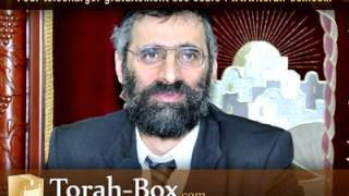 La Sexualité (1ère Partie) - Rav Ron CHAYA (Torah-Box.com)